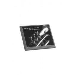 gedenksteen marlin met lasergravure FB1HL