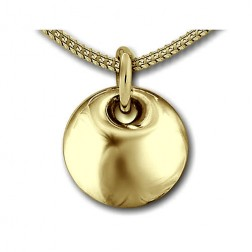 Ashanger goud DS H001-G